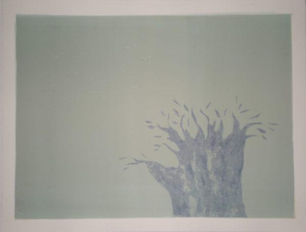 Blue Baobab