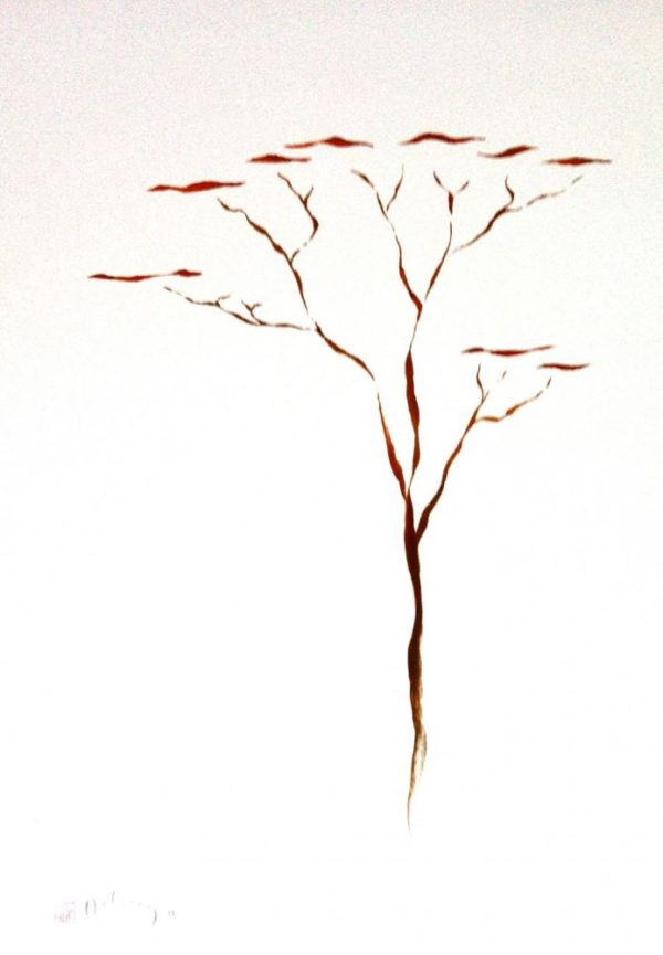 Umbrella Thorn Red