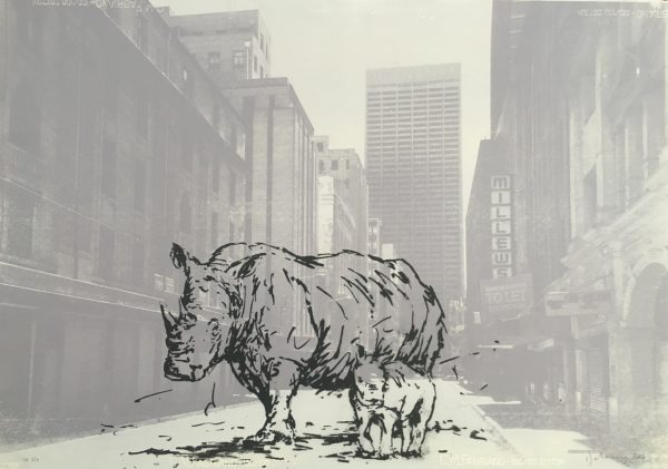 Ghosts of Fox St (Rhino) 2/4