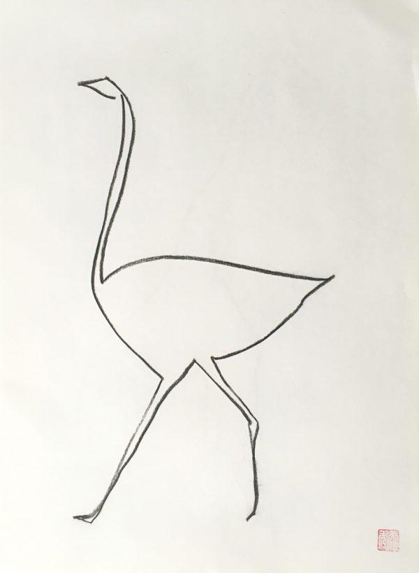Ostrich b