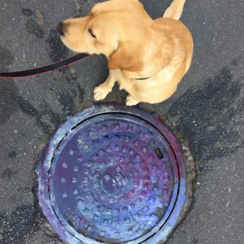 Pablo manhole