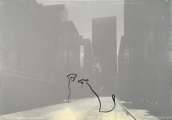 Ghost of Fox Street (Cheetah)