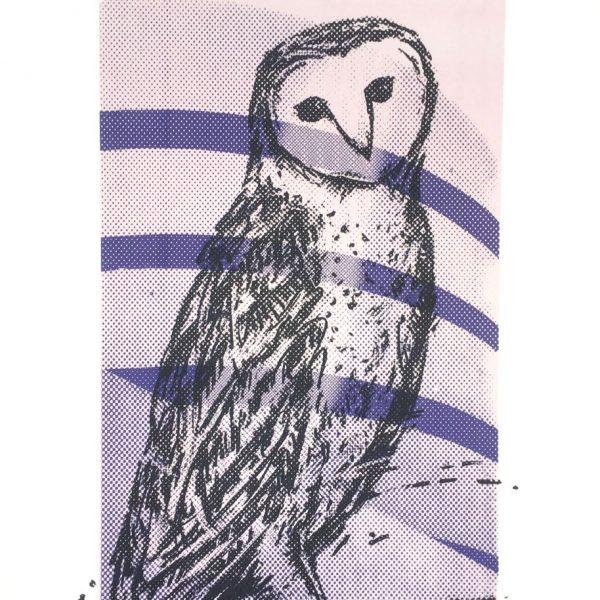 Barn Owl / Guggenheim Museum