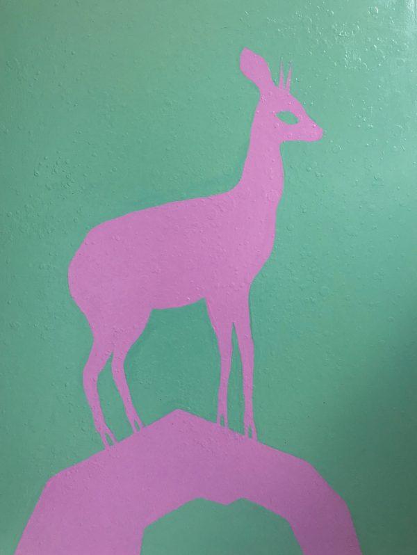 The pink klipspringer