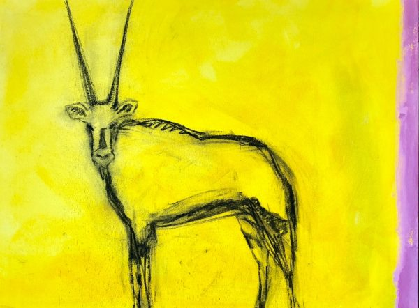 The yellow oryx