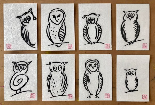 Owl sketches (1)
