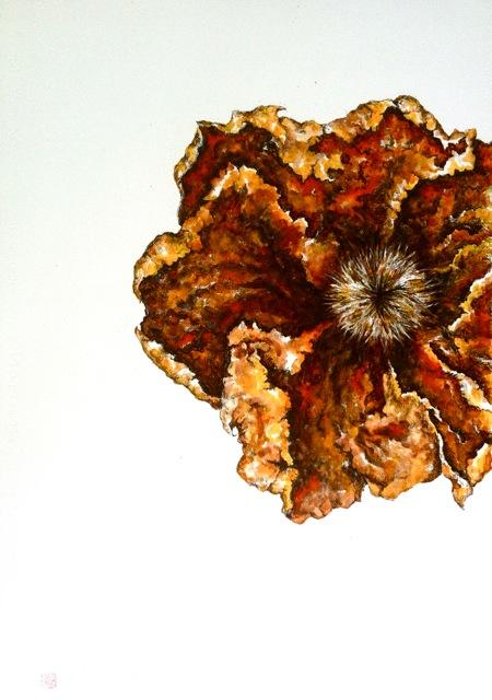 Ferruginous flower