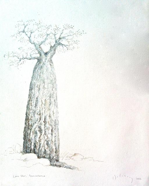 Lone Star, Pamushana