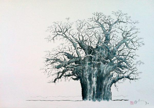 My Grandfather's Baobab