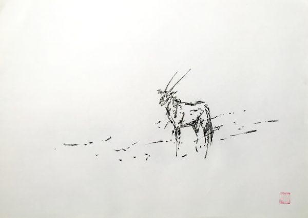 Oryx b