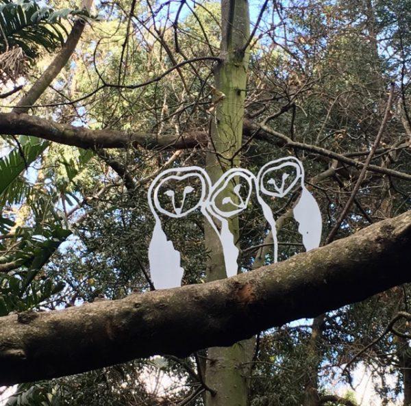 Owls O