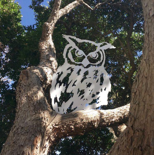 Owl T