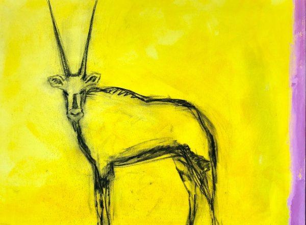 The yellow oryx