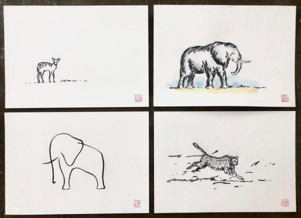 Safari sketches (1)