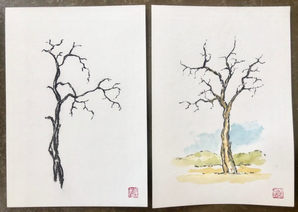 Ironwood tree sketches
