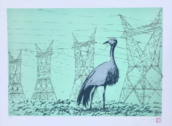 Blue Crane at Kusile